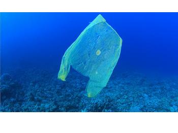 You cannot swim in a plastic ocean